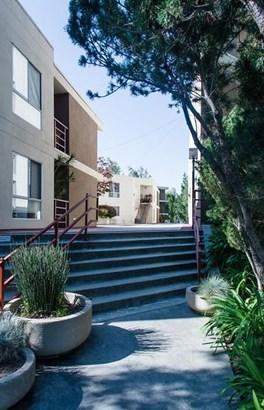 358 Grant Avenue, Palo Alto, CA - USA (photo 3)