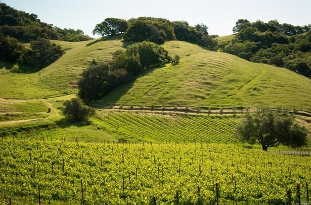 6902 Plum Ranch Road, Santa Rosa, CA - USA (photo 3)