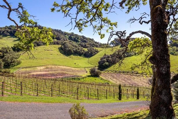 6902 Plum Ranch Road, Santa Rosa, CA - USA (photo 4)