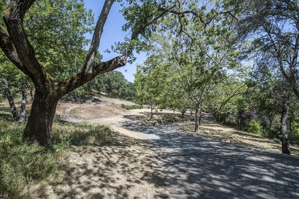 308 Olive Hill Lane, Woodside, CA - USA (photo 3)