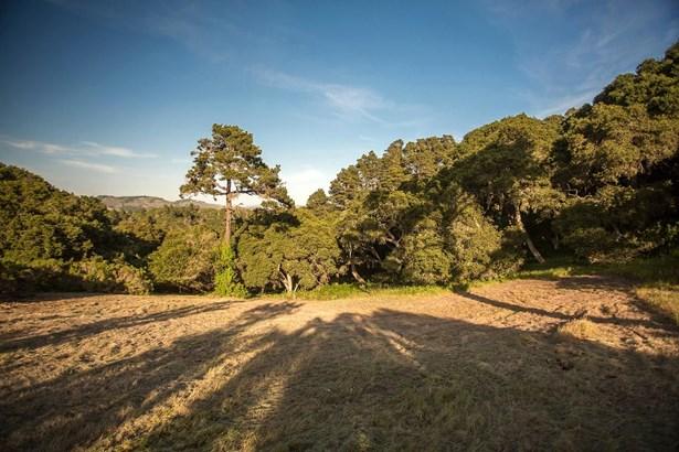 5494 Quail Meadows Drive, Carmel, CA - USA (photo 3)