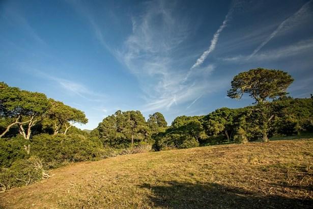 5494 Quail Meadows Drive, Carmel, CA - USA (photo 5)