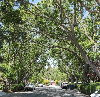 455 Santa Barbara Drive, Los Altos, CA - USA (photo 3)