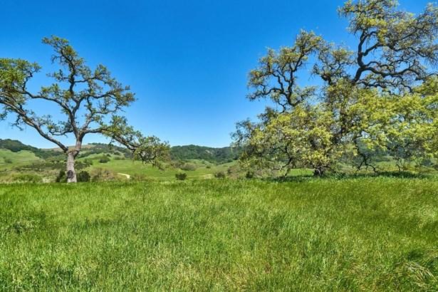 17385 Uvas Road, Morgan Hill, CA - USA (photo 4)
