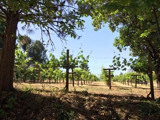 30000 Loma Chiquita Road, Los Gatos, CA - USA (photo 3)