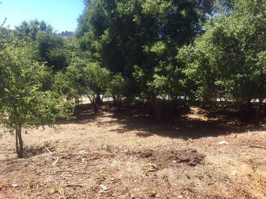 2220 Old Page Mill Road, Los Altos Hills, CA - USA (photo 4)
