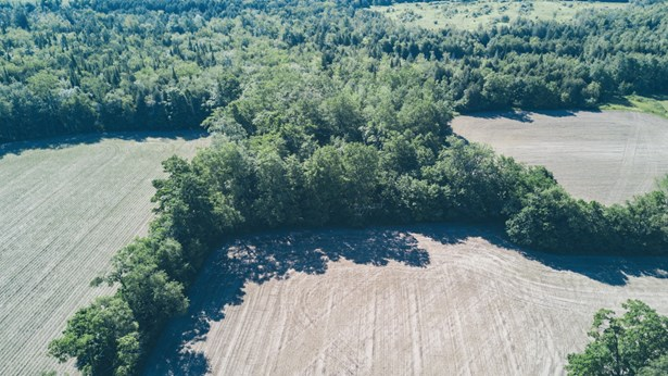 8538 Sideroad 30, Belwood, ON - CAN (photo 2)