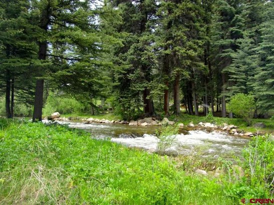1420 County Road 744 #spring Creek Spring Cre, Almont, CO - USA (photo 2)