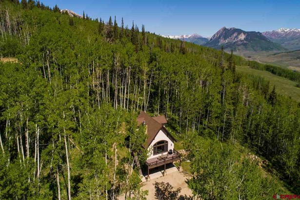 450 Oversteeg Gulch Road, Crested Butte, CO - USA (photo 1)