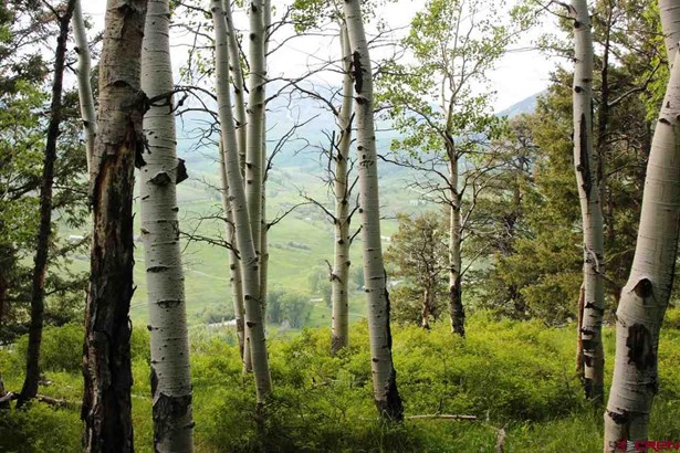 12 Star Mountain Ranch, Gunnison, CO - USA (photo 2)