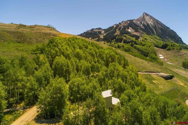59 Cinnamon Mountain Road, Crested Butte, CO - USA (photo 2)