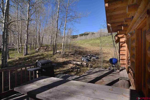 515 Oversteeg Gulch Road, Crested Butte, CO - USA (photo 5)