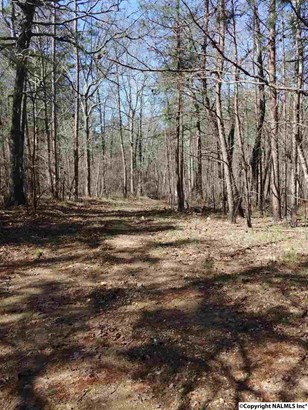 Lot 1 County Road 861, Gaylesville, AL - USA (photo 4)