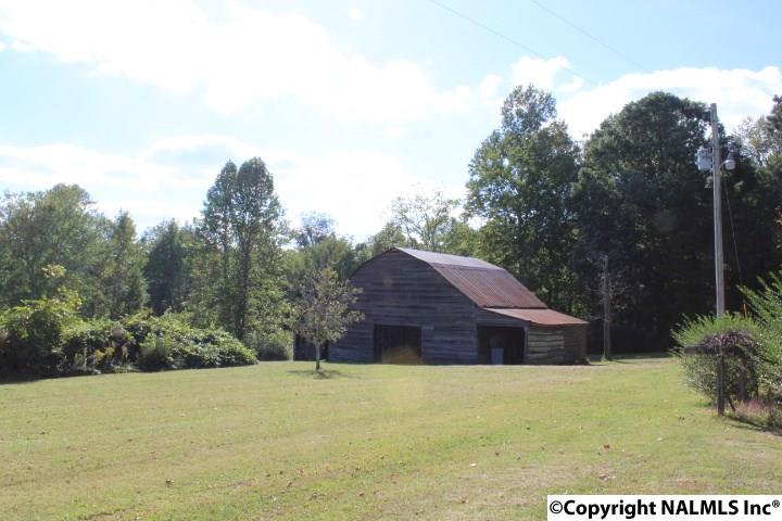 3033 County Road 22, Pisgah, AL - USA (photo 2)