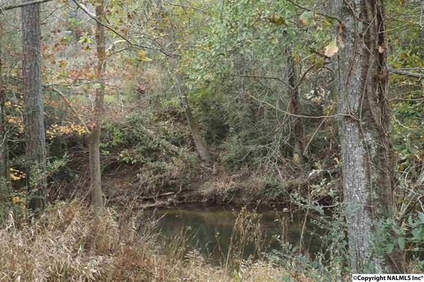 Pine Hill Drive, Rainsville, AL - USA (photo 2)