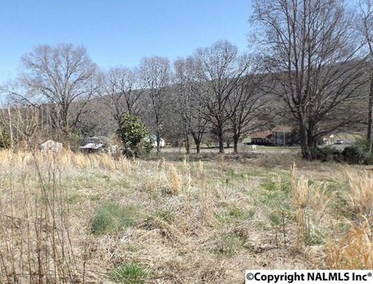 7923 County Road 137, Valley Head, AL - USA (photo 2)