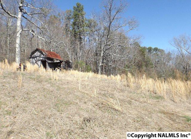 7923 County Road 137, Valley Head, AL - USA (photo 4)
