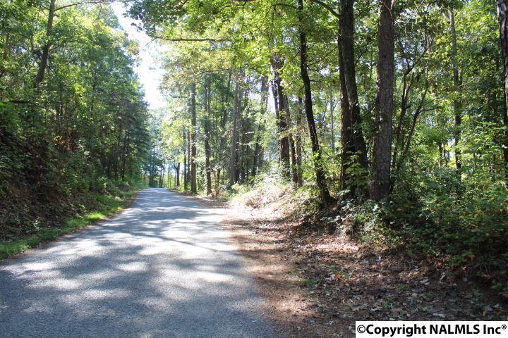 County Road 251, Cedar Bluff, AL - USA (photo 2)