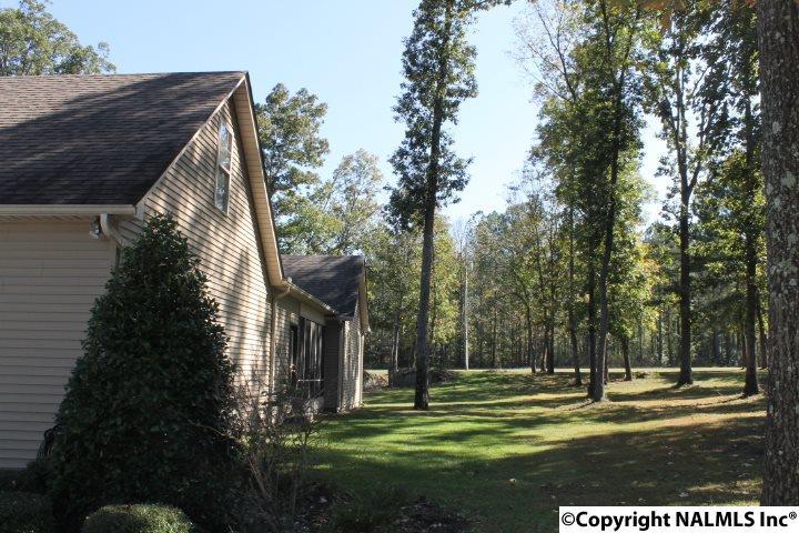138 Vfw Road, Rainsville, AL - USA (photo 2)