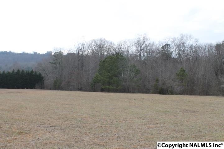 0 County Road 622, Valley Head, AL - USA (photo 5)
