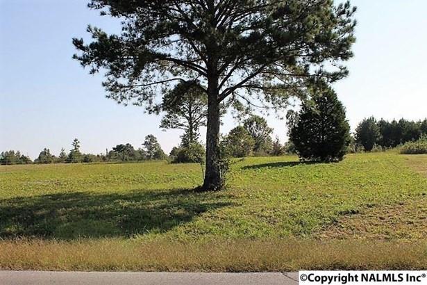 County Road 180, Rainsville, AL - USA (photo 1)