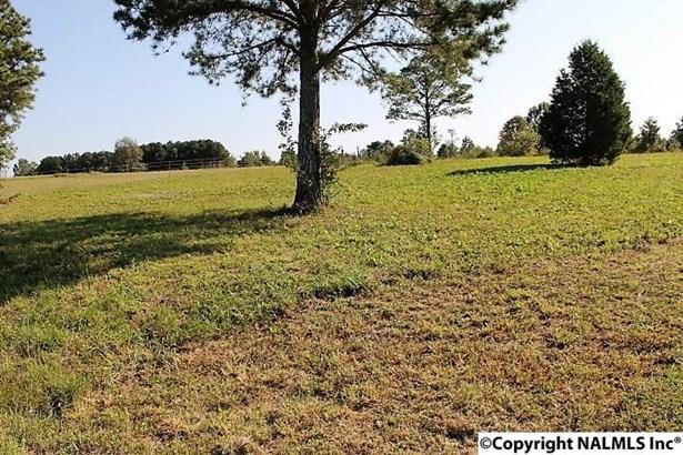 County Road 180, Rainsville, AL - USA (photo 3)