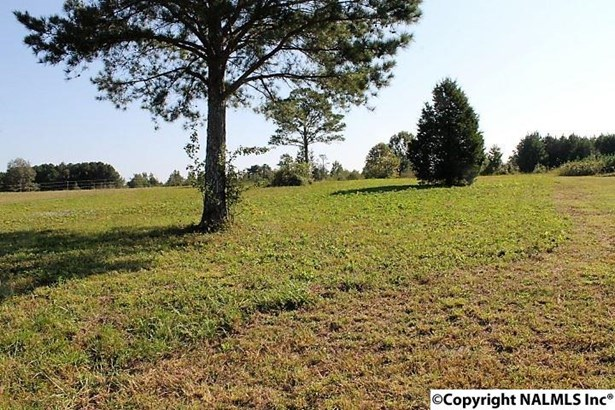 County Road 180, Rainsville, AL - USA (photo 5)