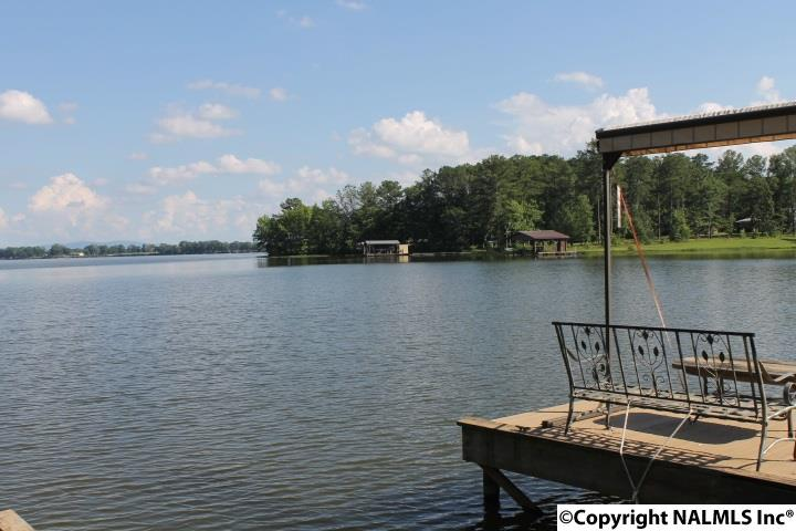 1310 County Road 642, Cedar Bluff, AL - USA (photo 2)