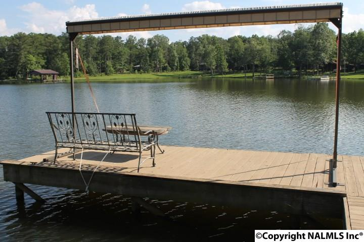 1310 County Road 642, Cedar Bluff, AL - USA (photo 5)