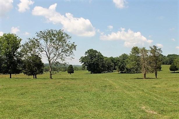 241 County Road 83, Collinsville, AL - USA (photo 5)