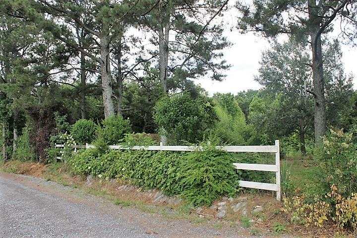 1854 County Road 571, Rainsville, AL - USA (photo 4)