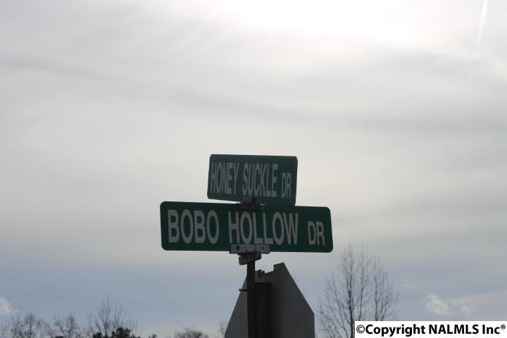 Lot 21 Honeysuckle Road, Rainsville, AL - USA (photo 3)