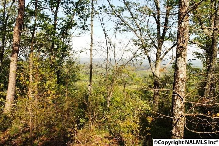 B7 County Road 865, Gaylesville, AL - USA (photo 1)