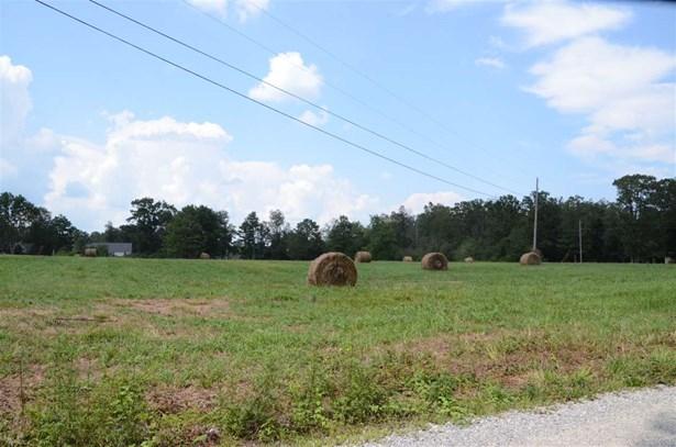 Dawson Road, Fyffe, AL - USA (photo 4)