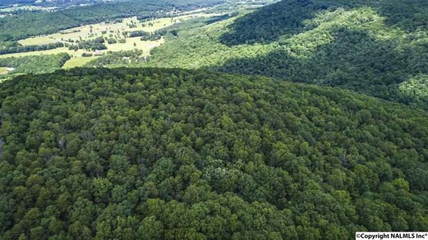 000 Lookout Mountain Parkway, Mentone, AL - USA (photo 2)