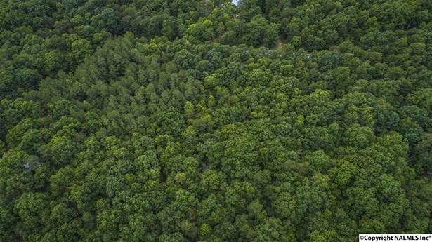000 Lookout Mountain Parkway, Mentone, AL - USA (photo 5)