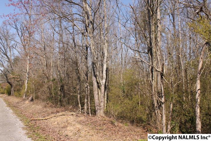 County Road 564, Sylvania, AL - USA (photo 1)