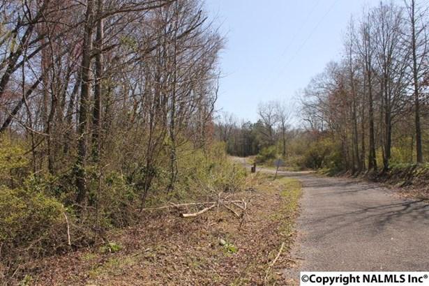 County Road 564, Sylvania, AL - USA (photo 3)