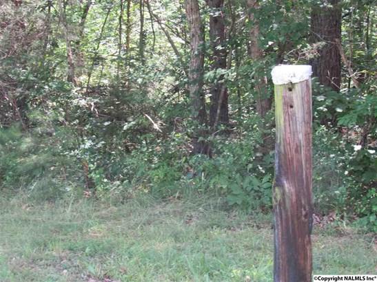 N Palmer Road, Hammondville, AL - USA (photo 1)