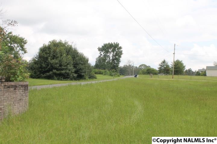 6107 County Road 122, Pisgah, AL - USA (photo 3)