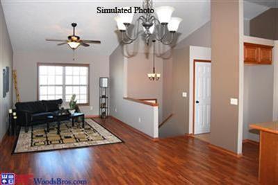 14463 Red Gauntlet Street , Waverly, NE - USA (photo 4)