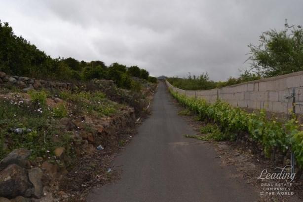 Vilaflor, Vilaflor, Spain, Vilaflor - ESP (photo 4)