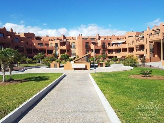 Granadilla, El Medano, Spain, El Medano - ESP (photo 1)