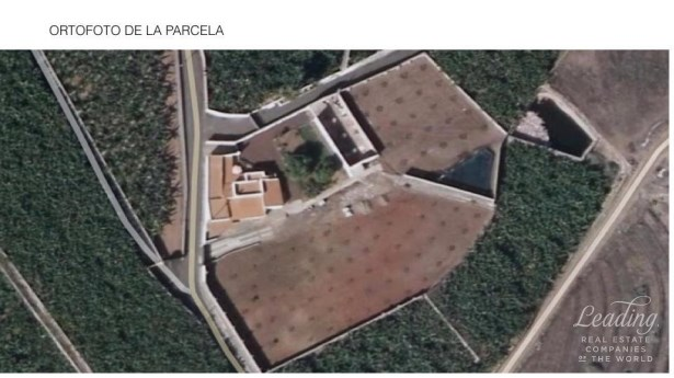 Guia De Isora, Alcala, Spain, Alcala - ESP (photo 2)