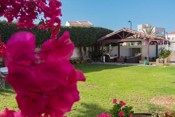 Arona, Costa Del Silencio, Spain, Costa Del Silencio - ESP (photo 4)