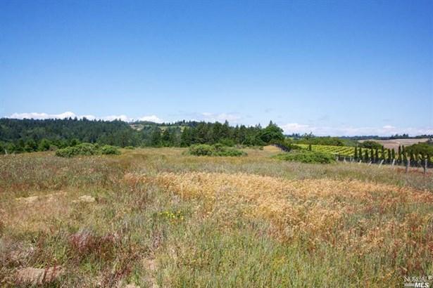 15200 Bodega Highway, Occidental, CA - USA (photo 1)