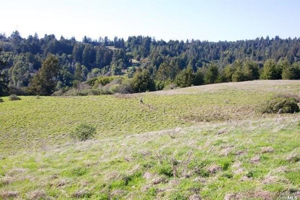 15200 Bodega Highway, Occidental, CA - USA (photo 4)