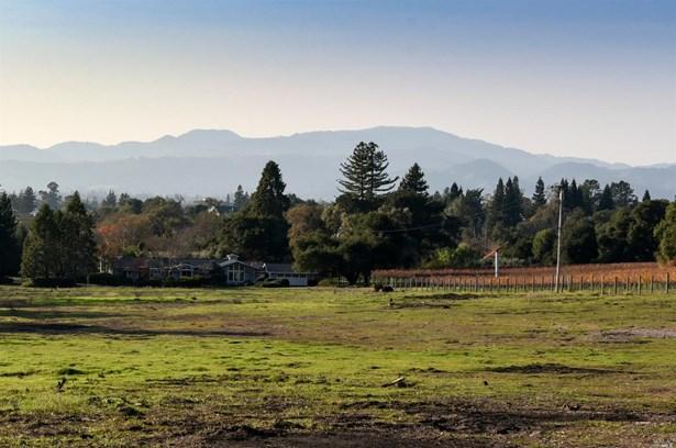 1164 La Grande Avenue, Napa, CA - USA (photo 2)