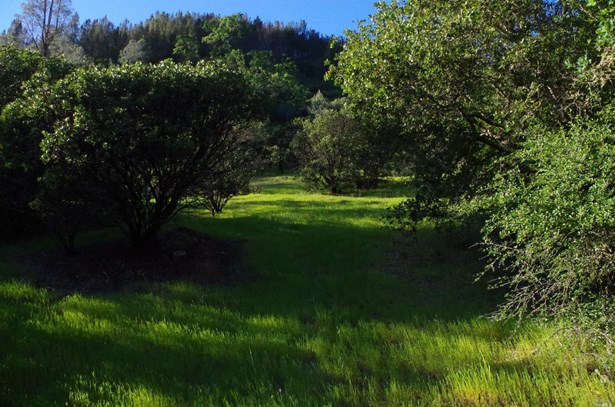 3150 Palisades Road, Calistoga, CA - USA (photo 3)