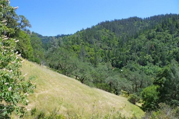 3150 Palisades Road, Calistoga, CA - USA (photo 5)